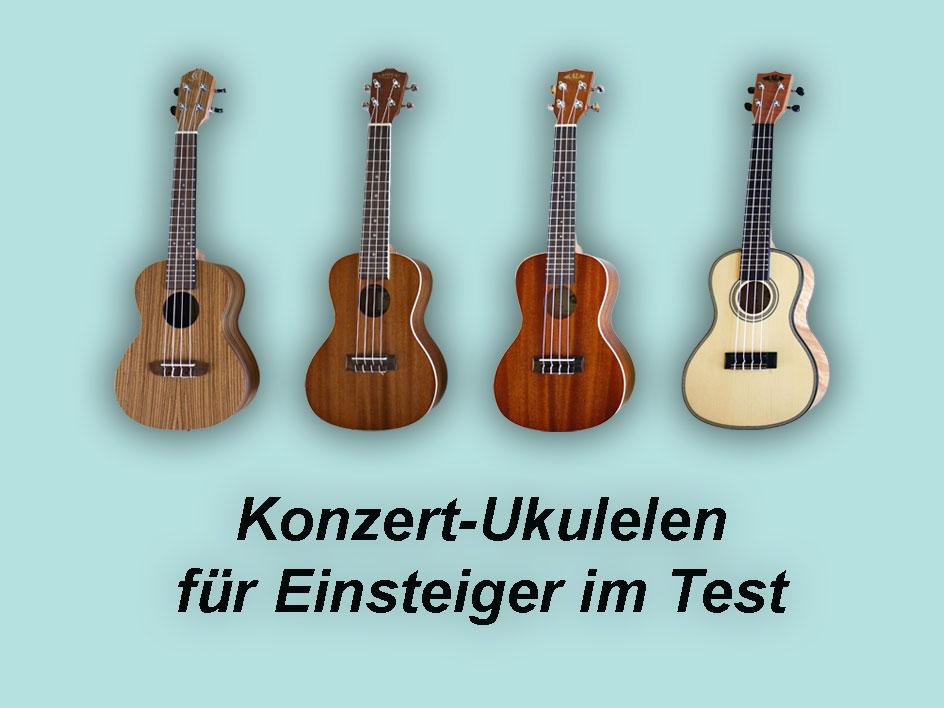 Konzert Ukulele kaufen